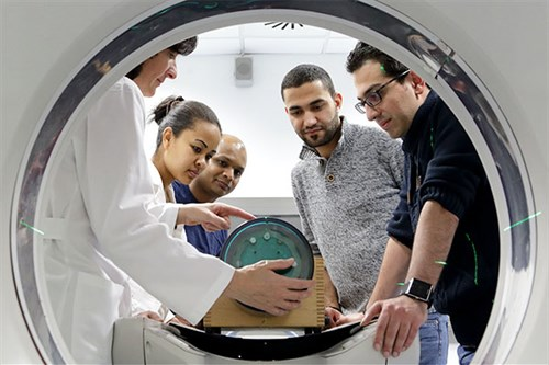 ICTP's Master of Advanced Studies in Medical Physics (MMP) programme